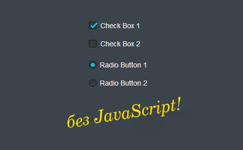 Красивые Radio Buttons (радио кнопка) и Checkbox (чекбокс) на CSS3